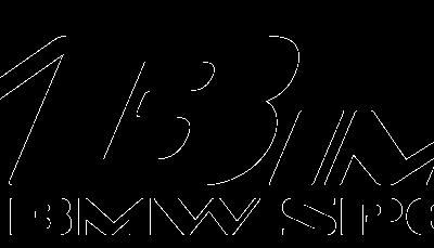SVBimmer
